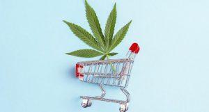 Cannabis legale conseguenze sulla salute psichica e fisica 680x365 La Cannabis Legale
